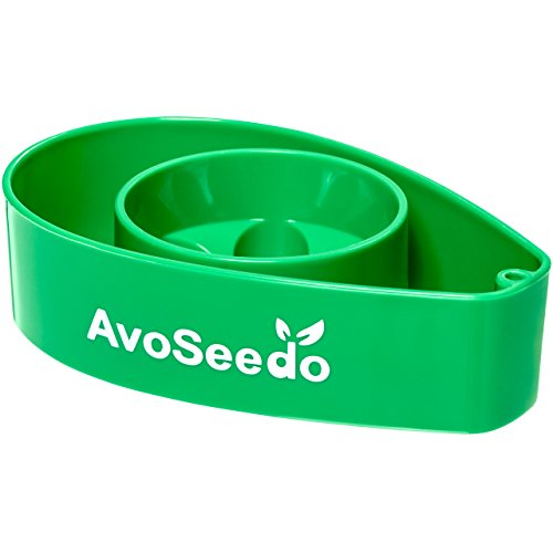 AvoSeedo Set with Plant Pot