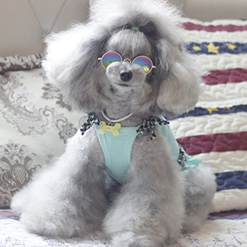 Retro Pet Sunglasses 5