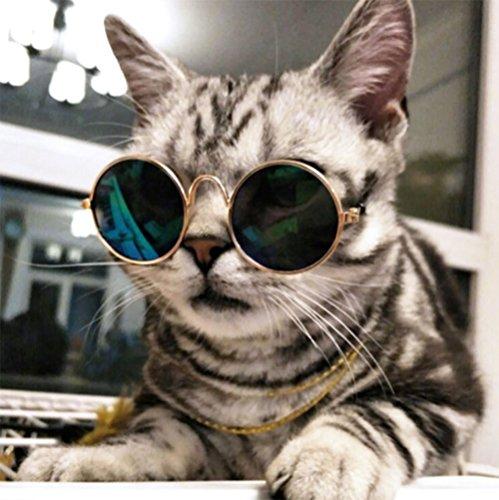 Retro Pet Sunglasses