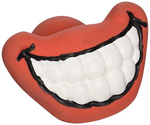 Silly Faces Smile Dog Chew Toy