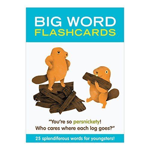 Big Word Flashcards