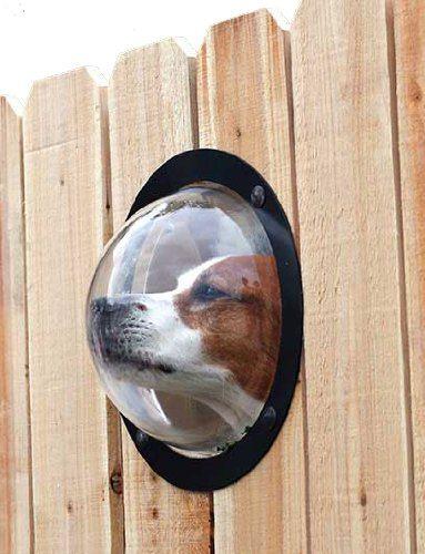 Pet Peek Fence Window
