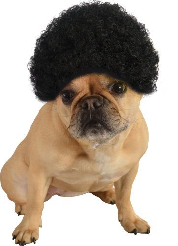 Pet Afro Wig