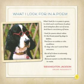 Throw-the-Damn-Ball-Classic-Poetry-by-Dogs-0-1